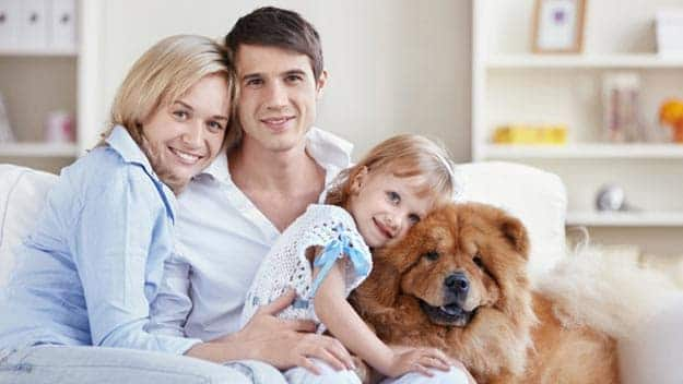 Wills & Trusts dog-young-family Direct Wills Enfield Lock